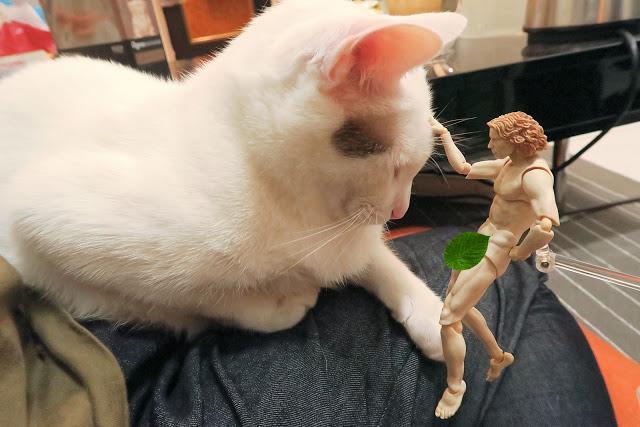 [玩具開箱]大名鼎鼎的達文西維特魯威人 被做成玩具啦!!
